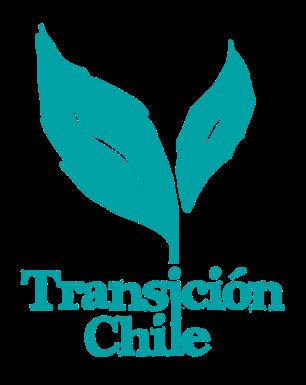 transicion chile small